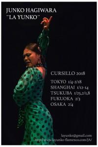 CURSILLO CARTEL 2018